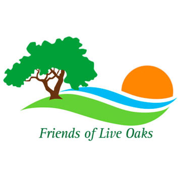 Friends of Live Oaks