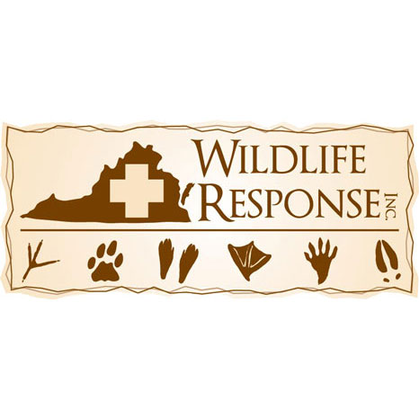Wildlife Response, Inc.